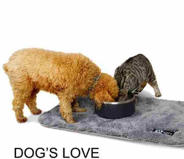 EB01 Stainless Steel Double Walls Insulated Bowls Dog Pet 03