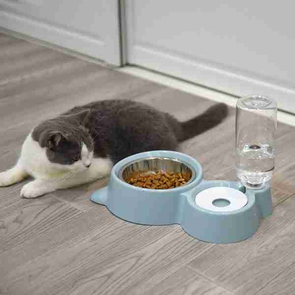 Stainless Steel Pet Bowl Feeder & Water Dispenser